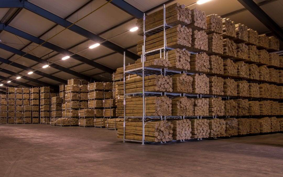 Bamboe-/tonkinstokken van hoge kwaliteit vanuit Kesteren