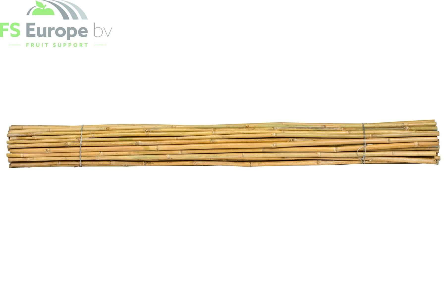 FSE Bamboe